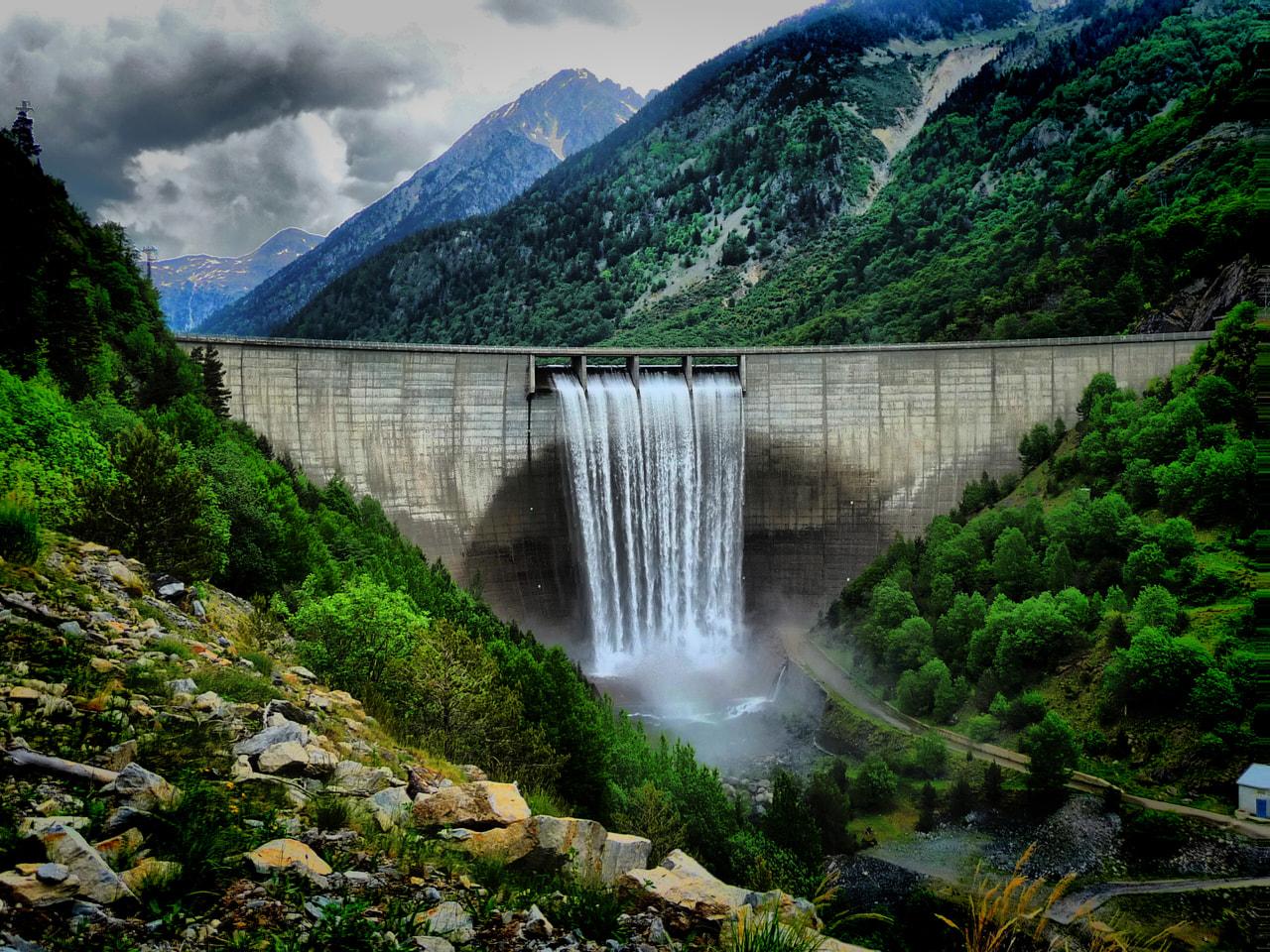 【環境トピックス】河川の 3分の 2がダムなどで分断 生態系に深刻な影響