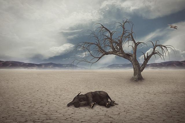 【環境トピックス】人為的影響で「100万種が絶滅危機」IPBES 報告