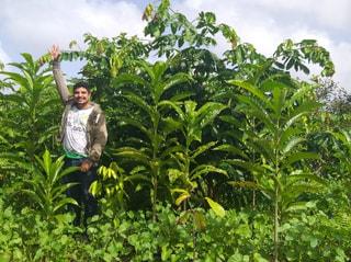 【地球村の森】アマゾン熱帯林での植林の支援をしました