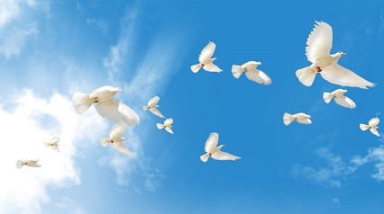 白熱教室「平和編」